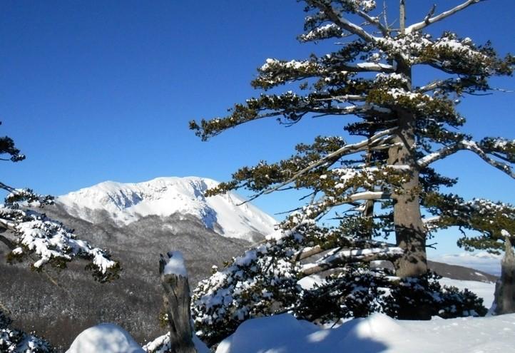 montagna_calabria_pollino_summitpost