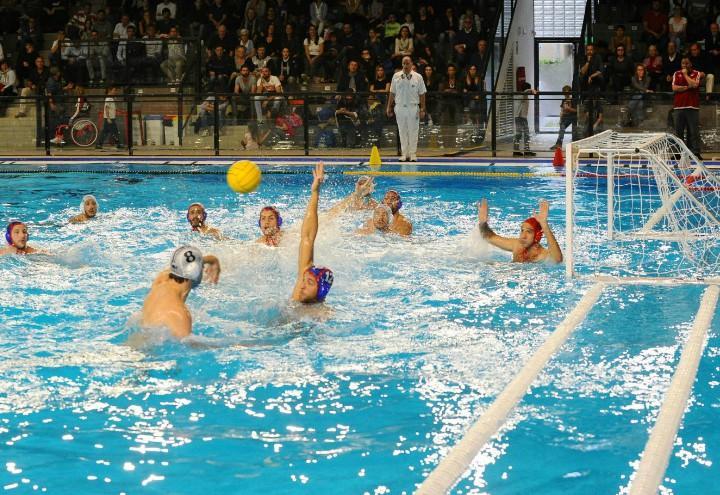 pallanuoto maschile Italia
