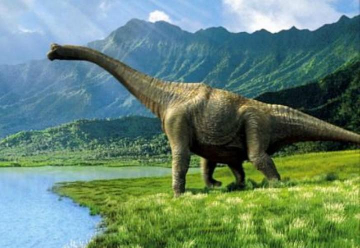 dinosauri-fb