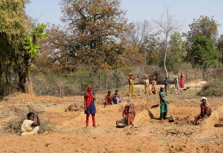 donne_lavoro_Madhya_Pradesh_India_wikipedia_2017
