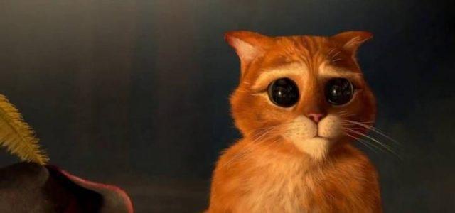il-gatto-con-gli-stivali-annunciato-videogioco-ufficiale-108726