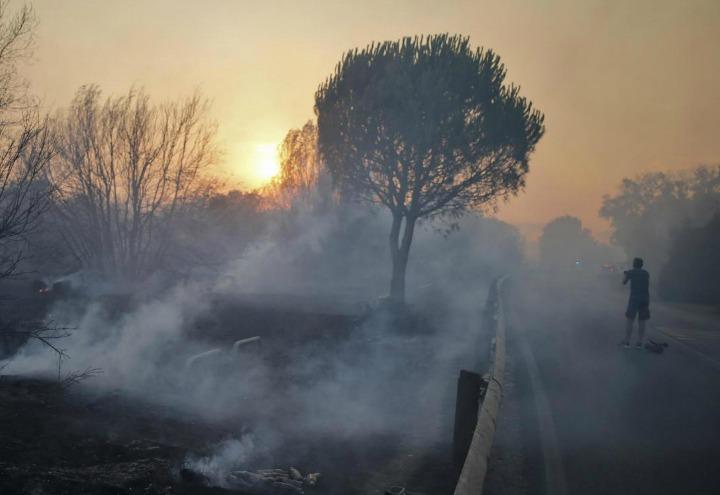 incendio_caldo_pineta_bosco_1_lapresse_2017