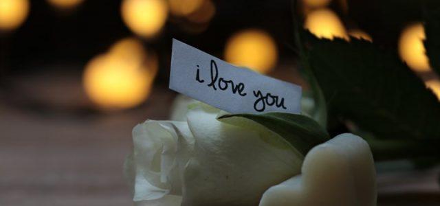 san_valentino_rosa_amore_pixabay