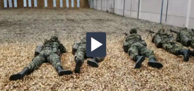 soldati_svizzeri_video_2017