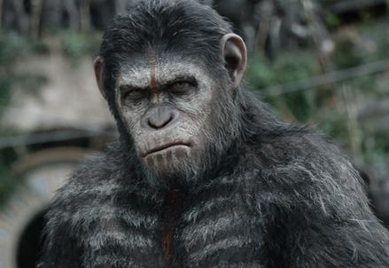 Apes_RevolutionR439