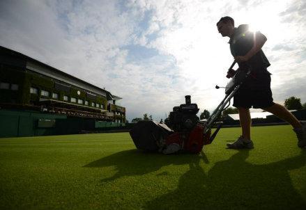 Giardiniere_Wimbledon