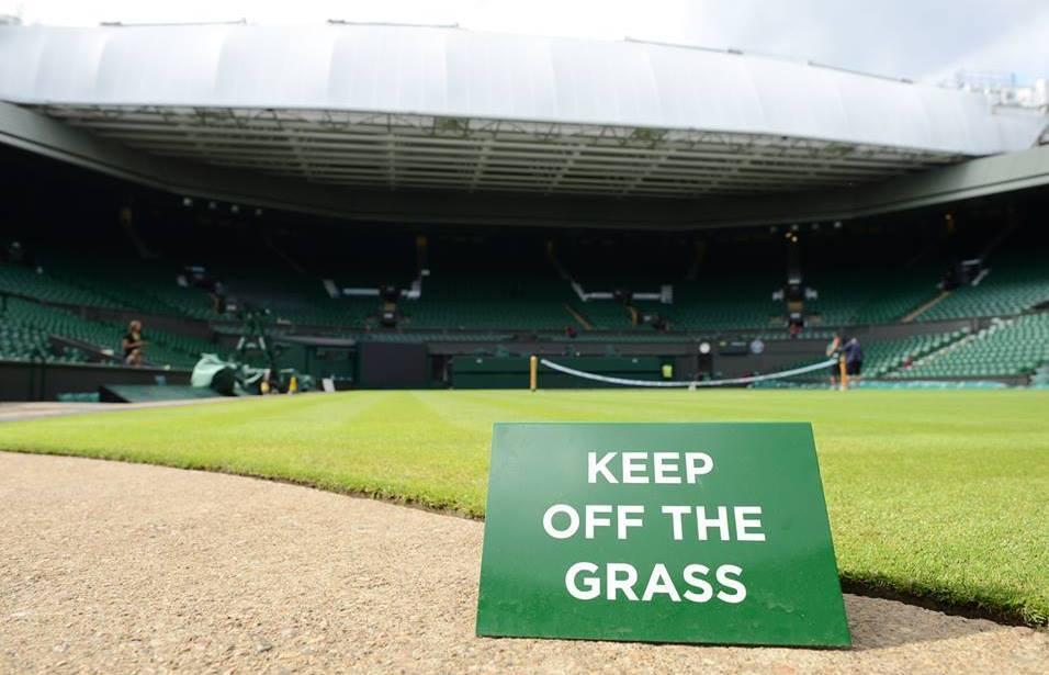 WimbledonGrass