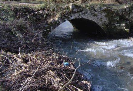 aniene_fiume_r439