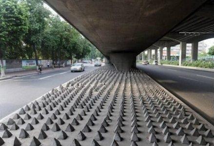 anti_homeless_R439