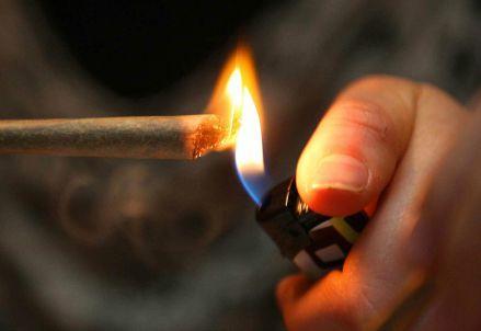 cannabis_canna_drogaR439