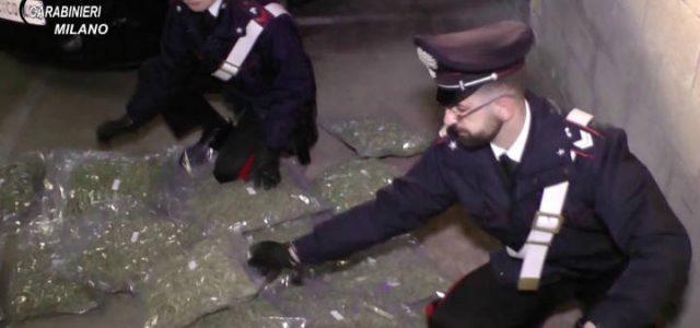 carabinieri_droga_sequestro_1_lapresse_2017