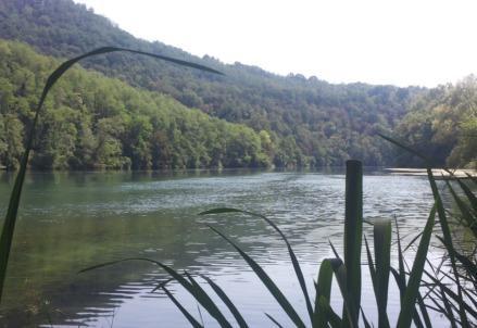 fiume_po_adda_natura_twitter