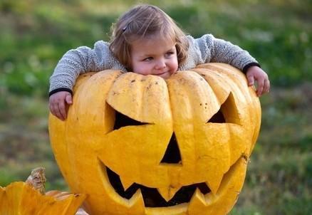 halloween_bambina_zuccaR439