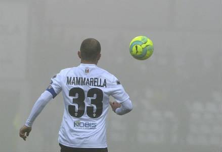 mammarella_provercelli_nebbia