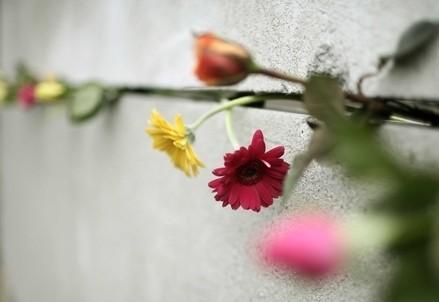 muro_berlino_fioriR439