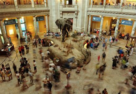 museo_scienza_r439