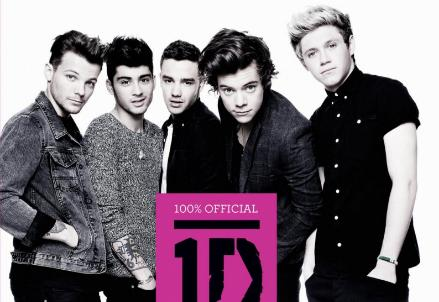 one-direction-libro-2013