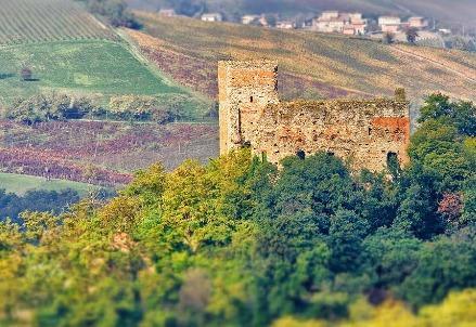 paesaggio_campagna_paviaR439