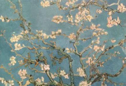 ramo_mandorlo_Vincent_van_Gogh