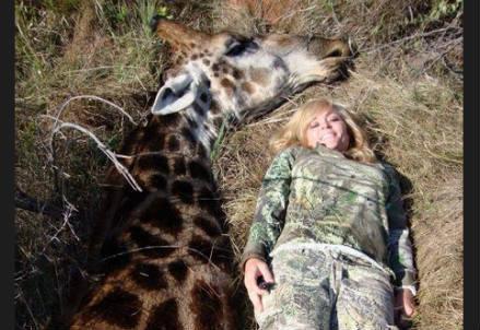 rebecca_francis_giraffa_r439