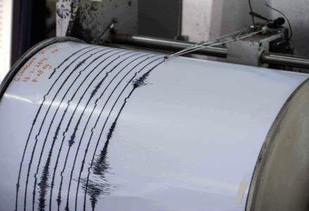 sismografo_new_r439