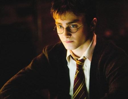 HarryPotter_sshot_Harry_6