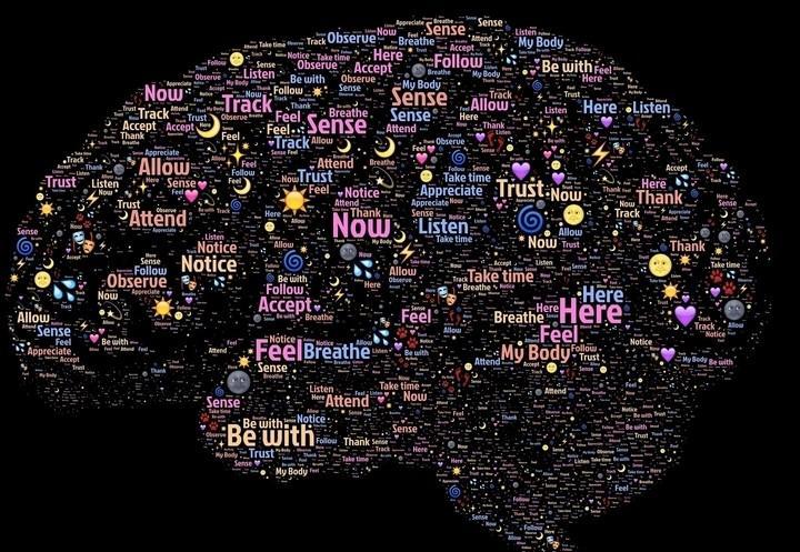 cervello_pensiero_pixabay