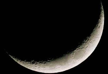 luna_R375