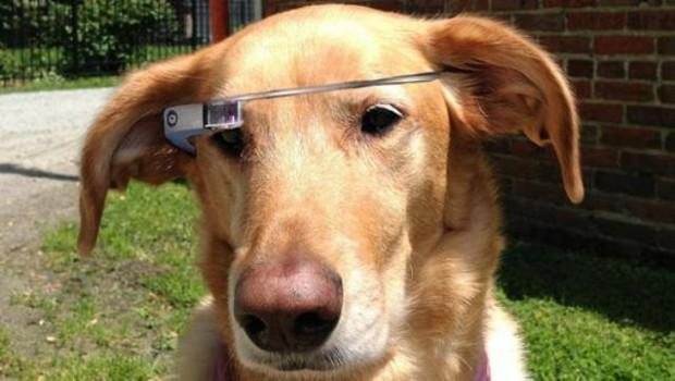 Google_Glass_FIDO