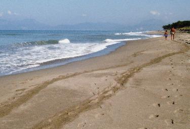 Mare_SpiaggiaR375