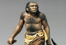 Neanderthal_FN1