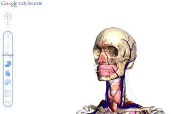 body-browser_r400