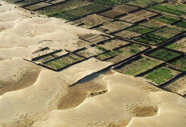 desertificazioneR375_20nov08