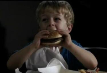 hamburgereroinaR375jpg