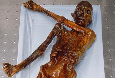 mummia_oetzi_R375