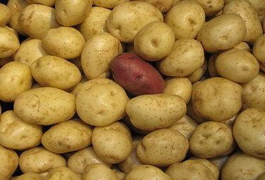 patatassassinaR375_05mar10