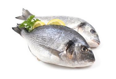 pesci_R375