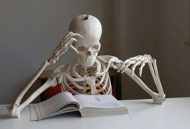 scheletroR375_04nov09