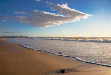 spiaggiaR375_12set08