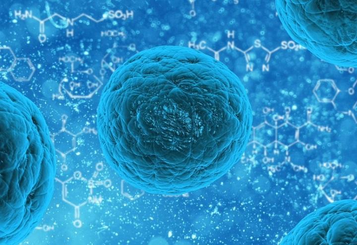 batteri_malattia_virus_pixabay