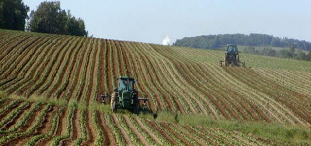 terreno agricoltura 2018 wikipedia 640x300