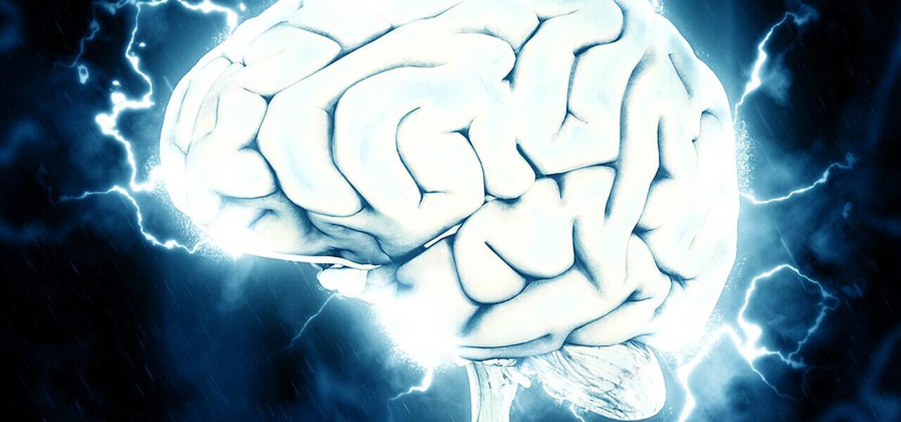 cervello pixabay