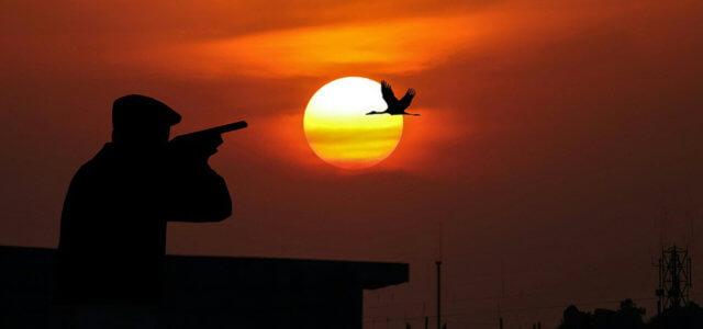 Siracusa, caccia sparando dal terrazzo: denunciato