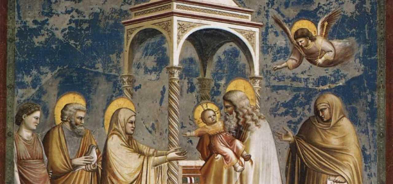Presentazione di Gesù al Tempio, Giotto
