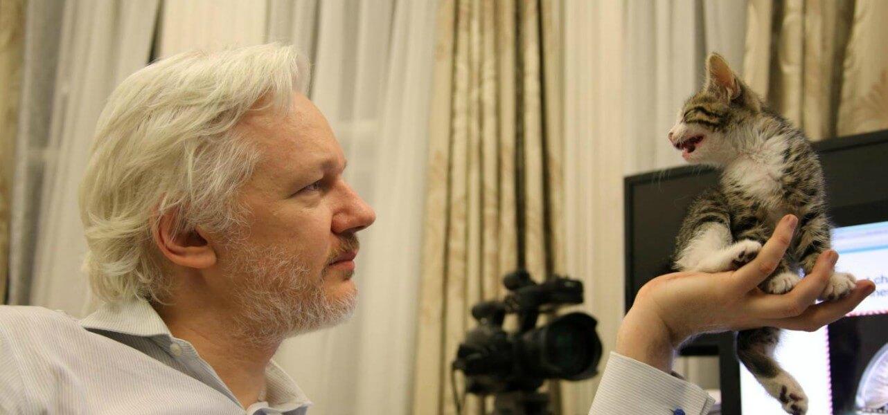 assange wikileaks 1 lapresse1280