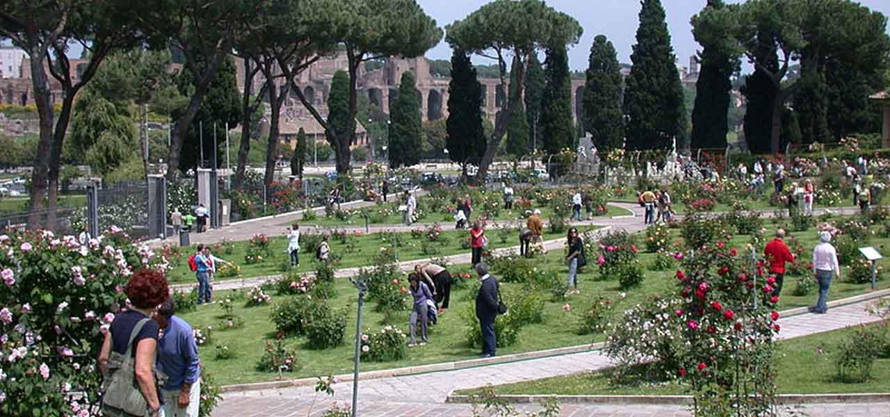 L Apertura Del Roseto Di Roma Una Pasqua Tra I Fiori Sulle