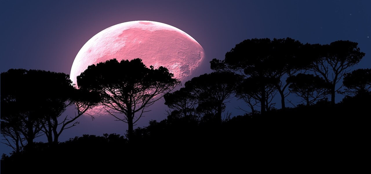 luna rosa pixabay