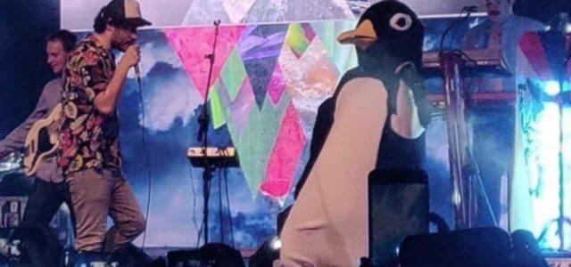 pinguini tattici nucleari 2019 instagram 640x300