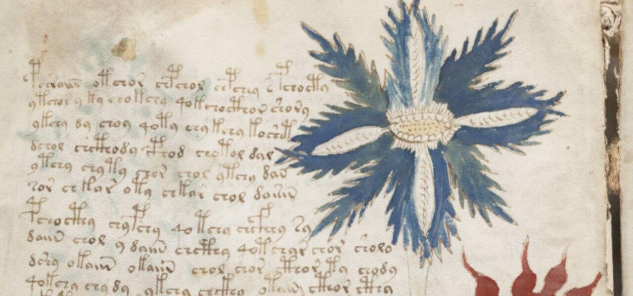 manoscritto voynich 2019 wikipedia