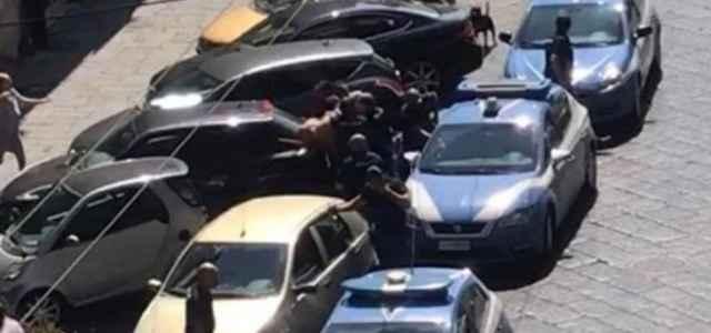 Pitbull ucciso da poliziotto (Instagram)